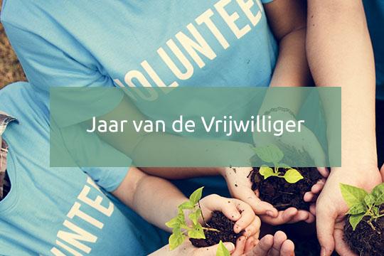 jaar van de vrijwilliger