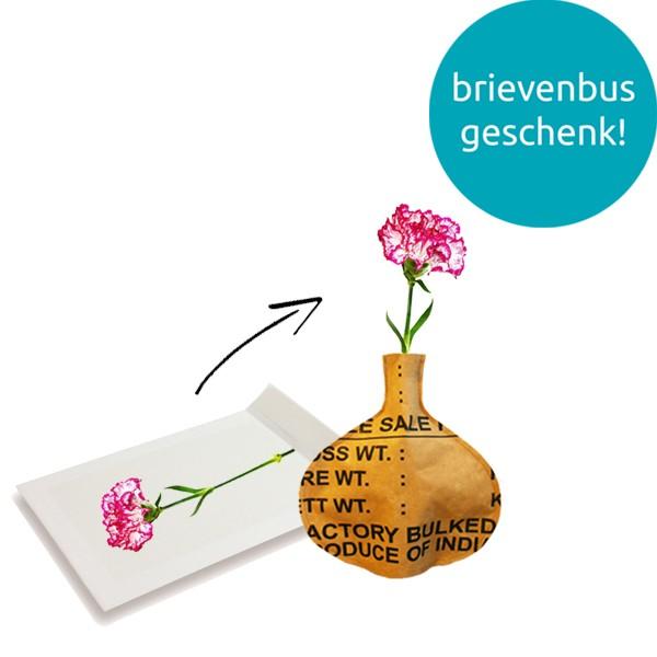 bottle-vase-brievenbuspakket-geschenk-met-verhaal