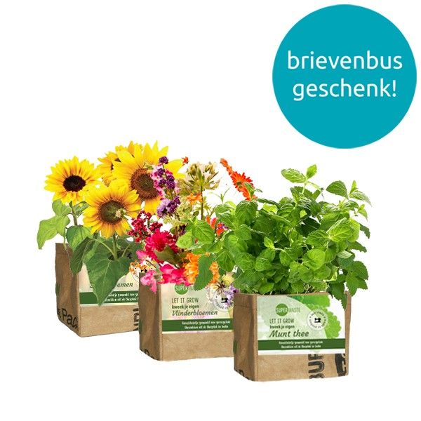 let-it-grow-mini-kweektuintje-superwaste-geschenk-met-verhaal