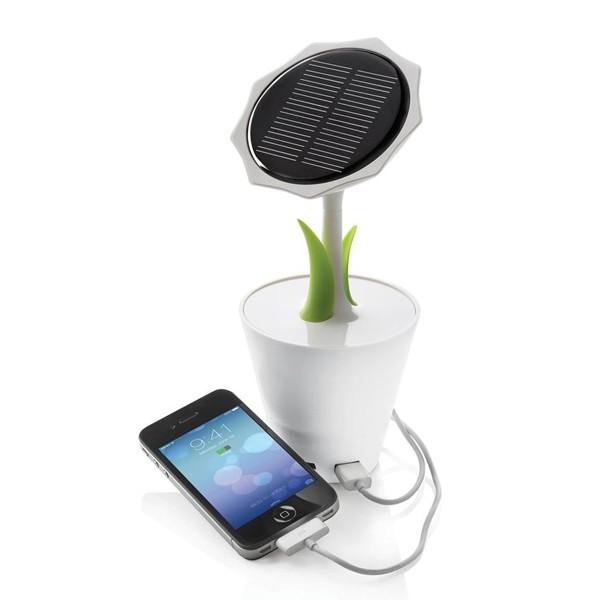 sunflower-solar