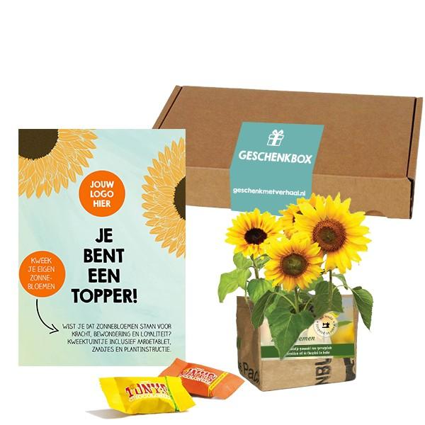 mini-kweektuin-zonnebloem-brievenbusgeschenk-met-verhaal