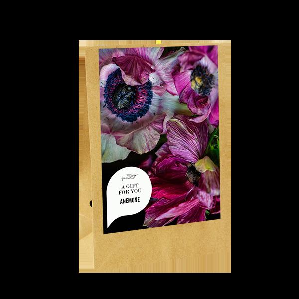 bloemen-geschenk-zak-a-gift-for-you-geschenk-met-verhaal