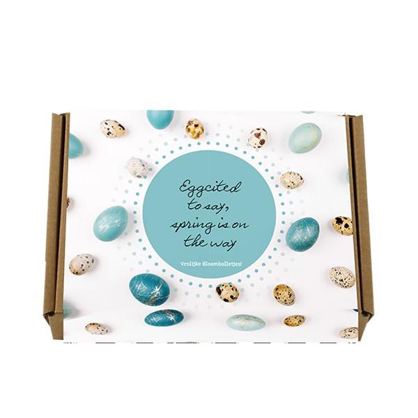 bloembollen-kraftdoos-lente-geschenk-met-verhaal