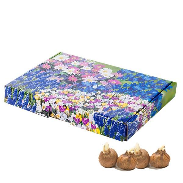 bloeiend-A5-brievenbus-geschenk-met-verhaal-voorjaar