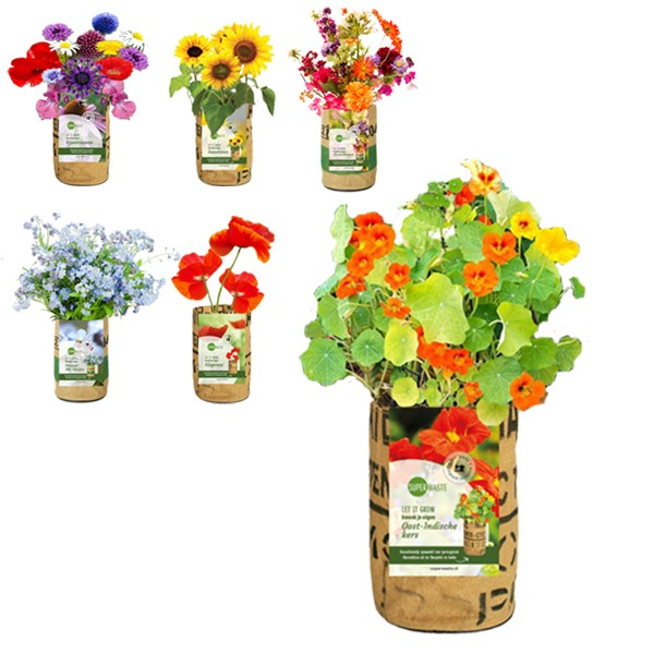 let-it-grow-kweektuin-flowers-superwaste-geschenk-met-verhaal