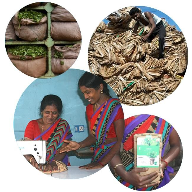 GmV-tea-bags-kruiden-india